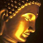 Фотография Gautama
