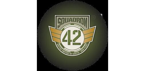 Официальное уведомление ОЗИ о Squadron 42 (25.01.18)